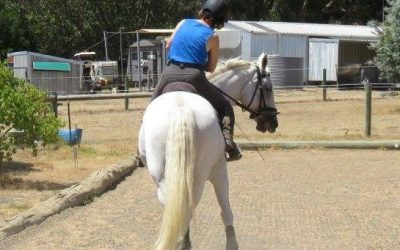 The Joy and frustration of Lateral Work -part 3